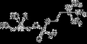thumbnail of alpha amino acid structure
