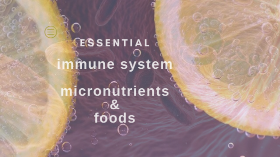 micronutrients in immune system blood flow