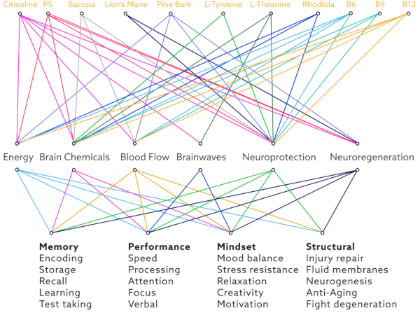 Graphics of Mind Lab Pro ingredients interaction