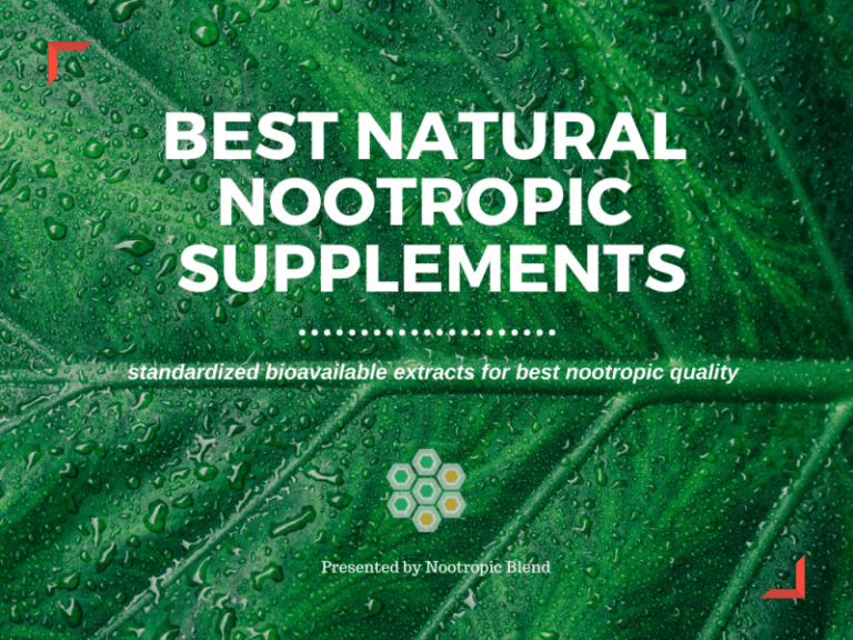 picture of green leaf for best natural nootropics supplements