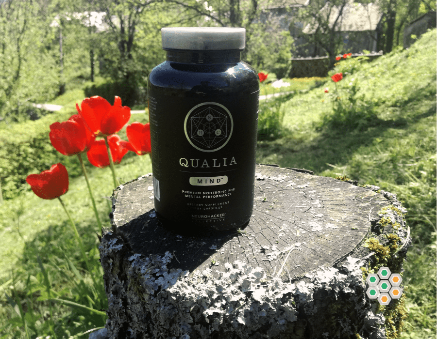 Picture of Qualia Mind review in the garden