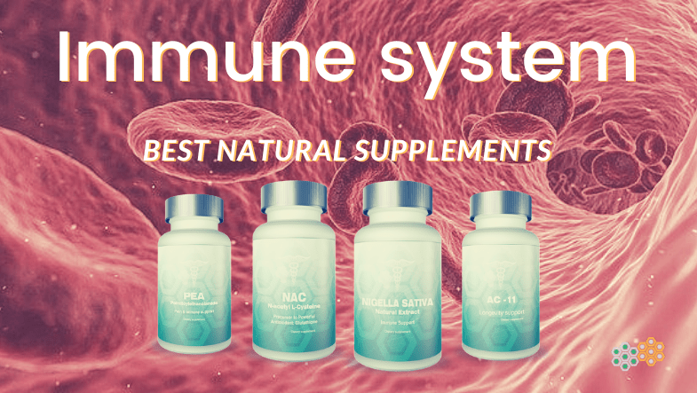 Picture of bloodstream and four bottles of supplements; immune system supplements